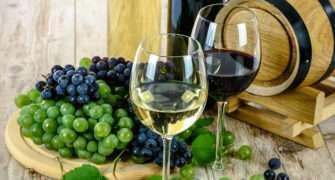 Vinobraní na Jiřáku
