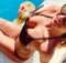 Herečka a zpěvačka Barbora Mottlová si užívá na Bali