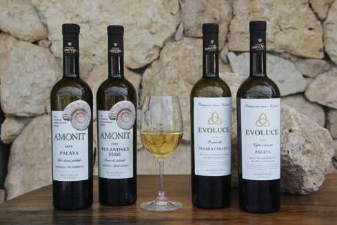 Skvělá vína v produkci vinařství Annovino