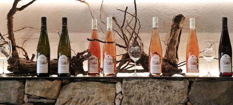 Vinařství Annovino